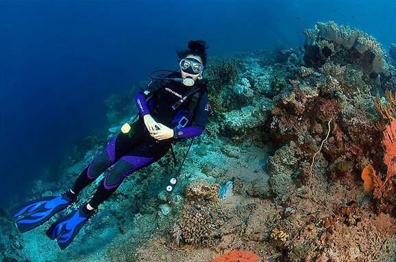 龙目岛潜水